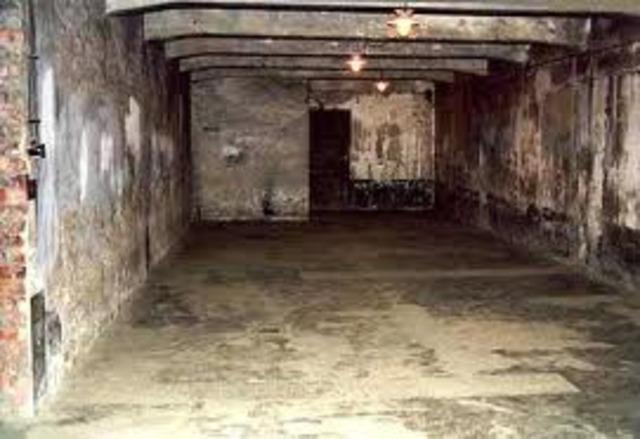 Mass murder of Jews in gas chambers begin