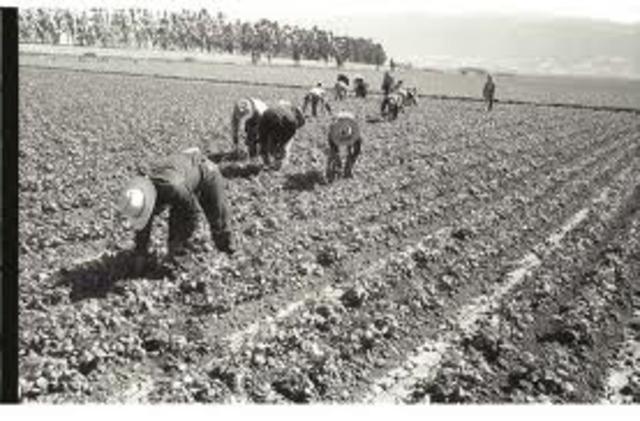 1951 Public Law 78-Extension of Bracero Program
