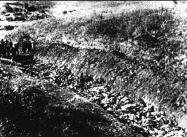 Nearly 34000 Jews are murdered by mobile killing squads at Babi Yar, near Kiev in the Ukraine.