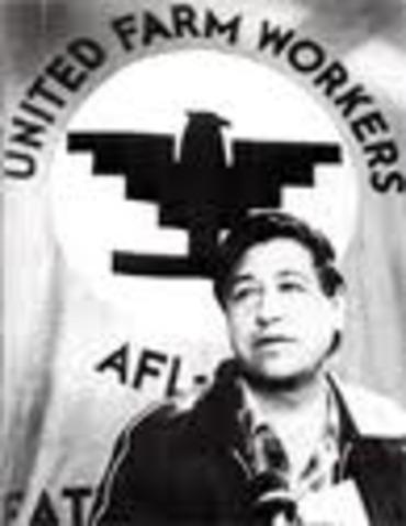 unitedfarm workers organizing committee