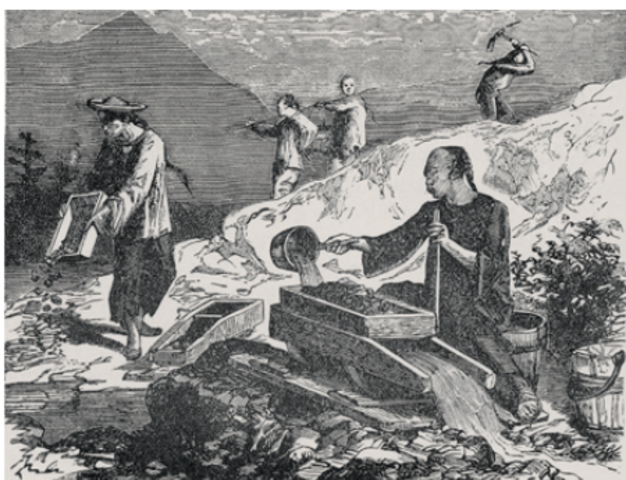 Chinese had come prior to the Gold Rushes