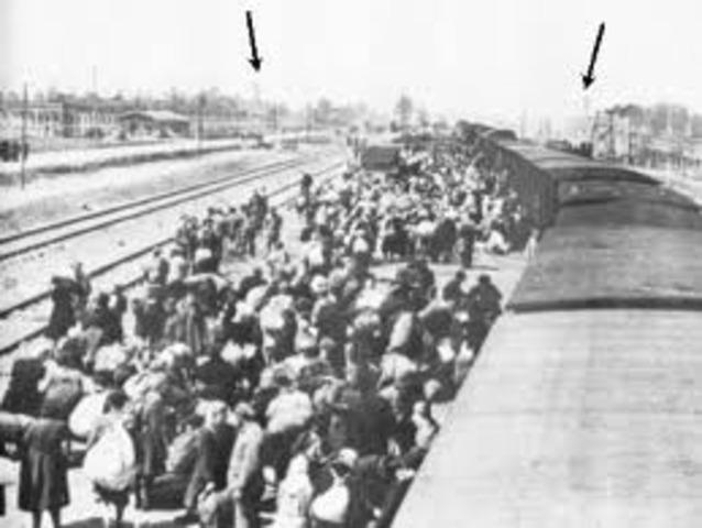 All german jews are sent to Auschwitz
