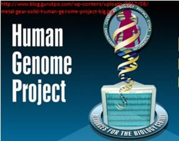 The Human Genome Project Begins