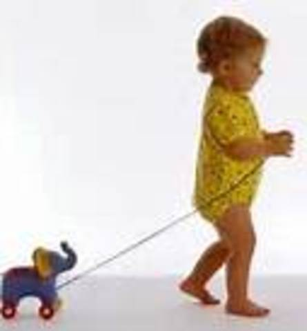 Physical Development in toddlerhood