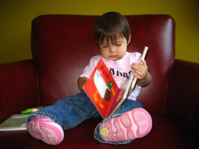 Cognitive development in toddlers