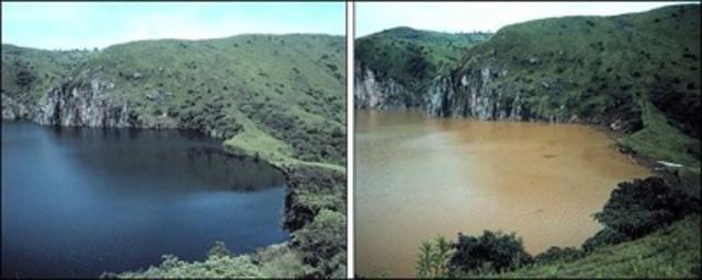 The Lake Nyos Limnic Eruption
