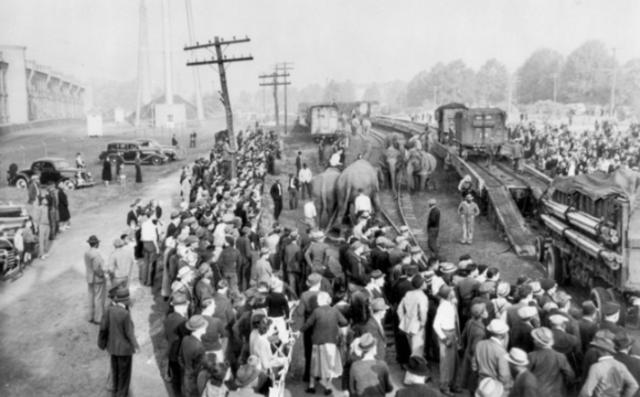 Barnum tourt met het circus van Aaron Turner door New England