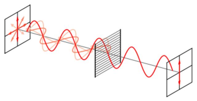 Teoria ondulatoria de la luz
