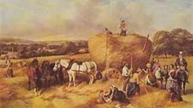Wave 1: Agricultural Revolution 8000 bc-1750