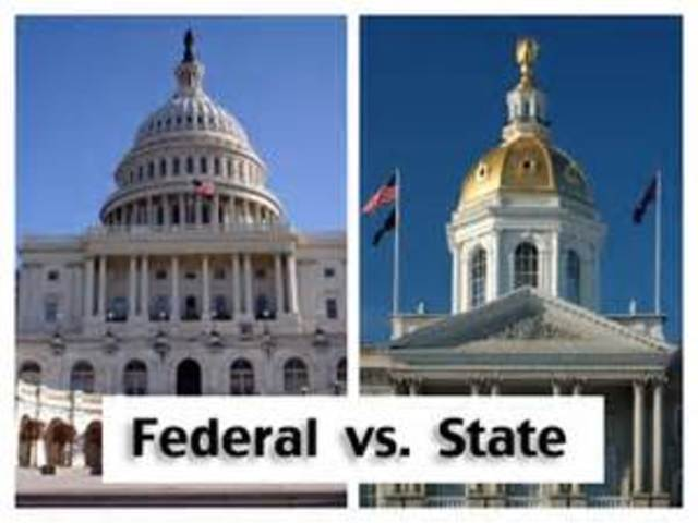 Federal Government vs. State Government
