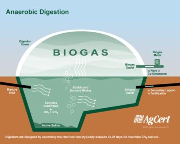Energía anaeróbica – sustitución de gas natural a nivel global.