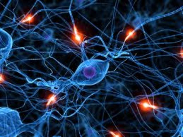 Aplicaciones de Redes Neuronales