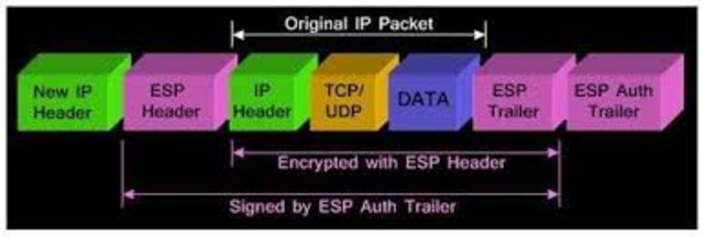 Packets become mode of transfer