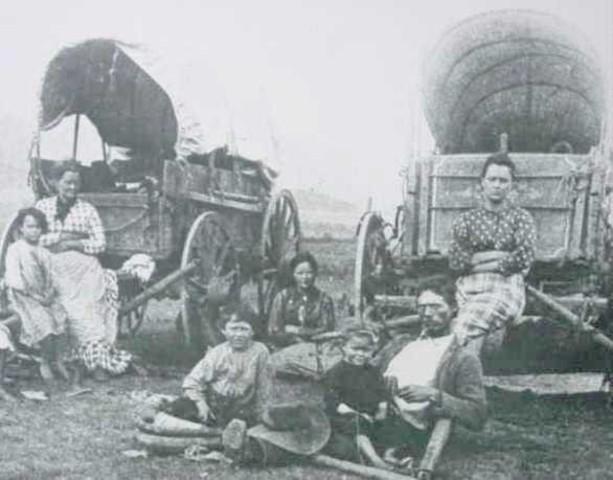 Oregon trail (1843) sw