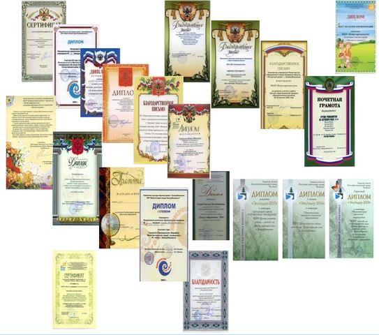 Достижения за 2011-2012 годы