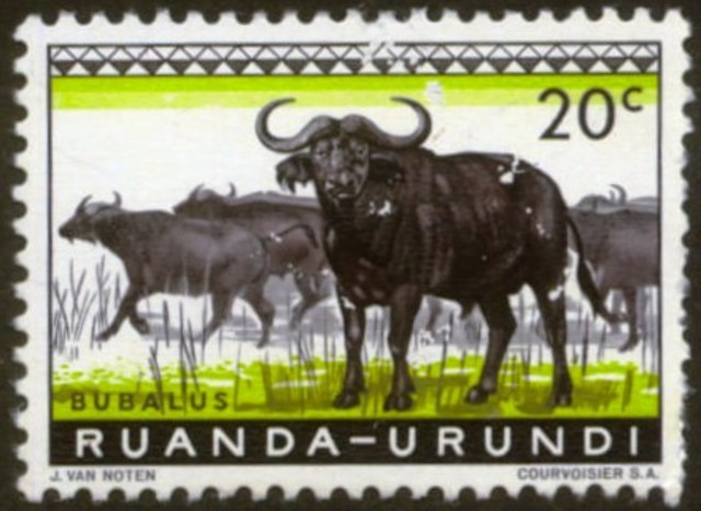 Rwanda - Urundi are joined as a League of Nations mandate governed by Belgium