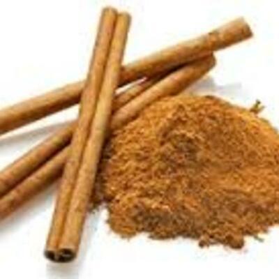 History of Cinnamon timeline