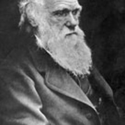 Darwins theory of evolution. timeline