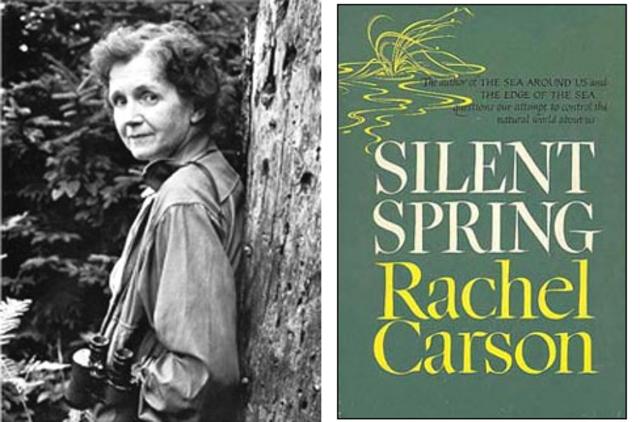 Rachel Carson Writes Silent Spring