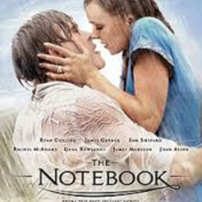 GB The Notebook by Nicholas Sparks,fiction,239 timeline