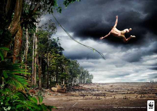 Tarzan y Sus Amigos Ya No Tienen Donde Jugar (Desaparición Selvas Tropicales)