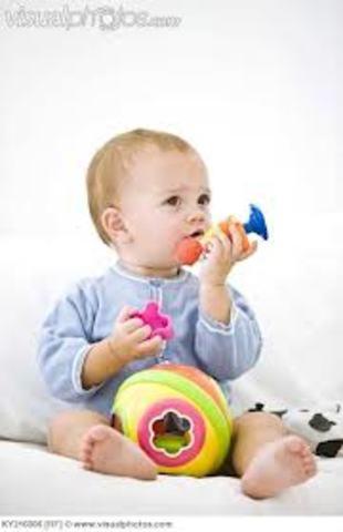 Infancy – Cognitive (Month 6)