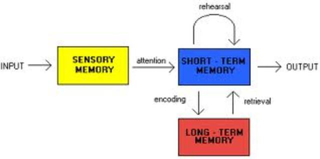 Information Processing Theories