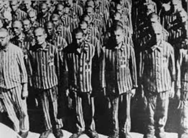 The Nazi's start to gather the Jews