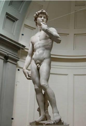 Michelangelo completes David