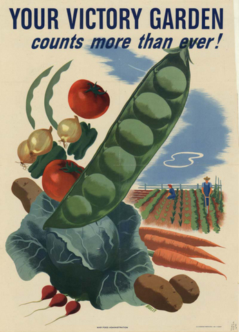 Chapter 18 Section 1: Victory Gardens