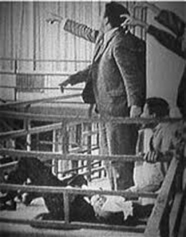 Martin Luther Kign Jr's Assasination
