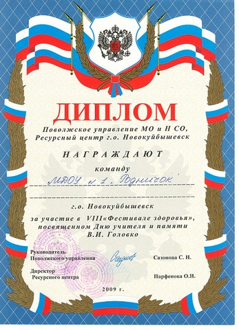 Достижения коллектива 2009 год