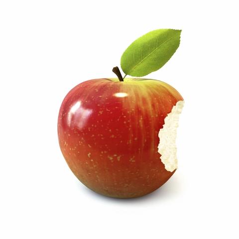 The birth of Apple