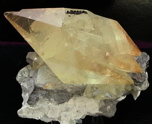 Biomaterial - Calcitita