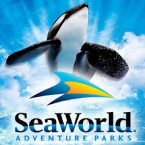 Yo viajé a Sea World
