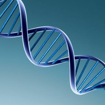 Historia del ADN timeline