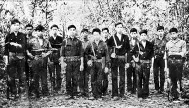 Vietcong Defeat