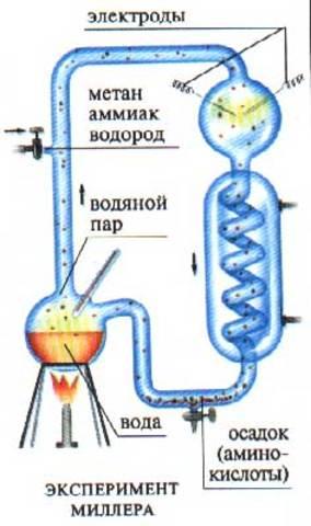 Эксперимент Миллера — Юри (Подтвеждение абиогенеза)