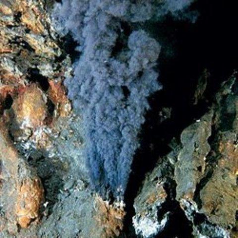 Теория зарождения жизни в горячей воде