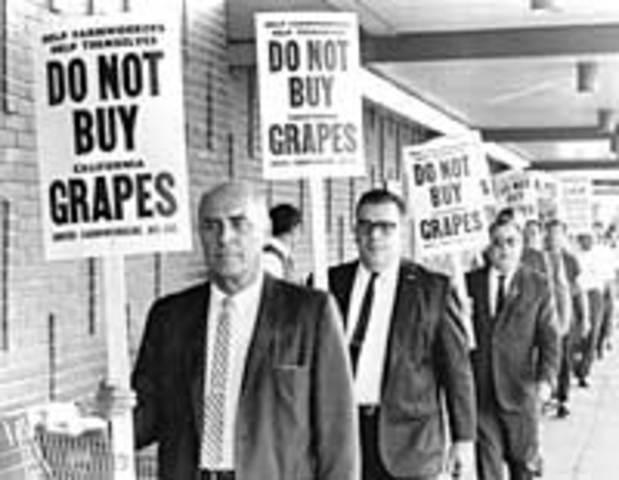 The Great Grape Boycott