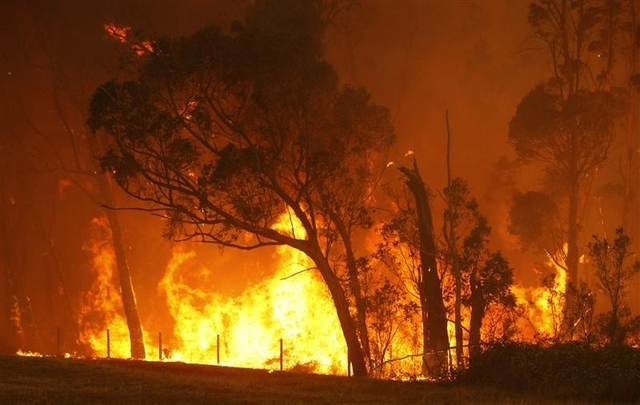 The worst wildfires in Australia's history kill at least 181 people