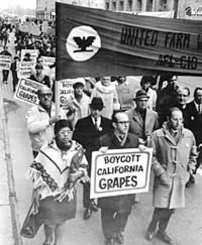 The Delano Grape Strike (Grape Boycott)