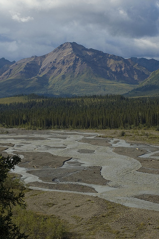 Stampede Trail Project Begins