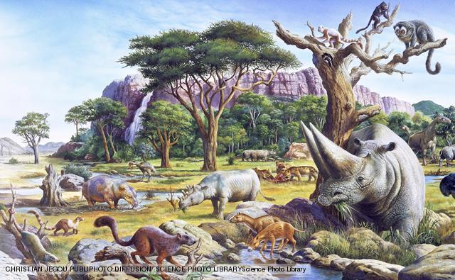 Paleocene 65 MYA - 59 MYA