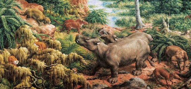 Eocene 59 MYA - 38 MYA