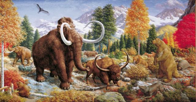 Pleistocene 3 MYA - 10,000 YA