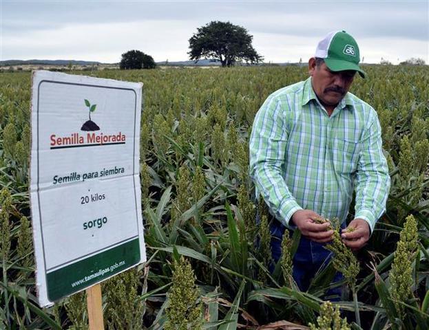 Programa de apoyos directos y productivos al campo (Produce)