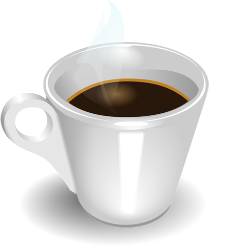 Hot Coffee Controversy