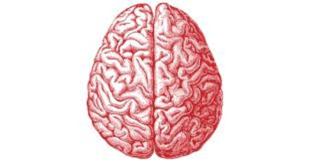 Farwell Brain Fingerprinting