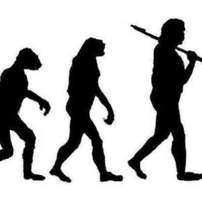 Evolution Revolution timeline